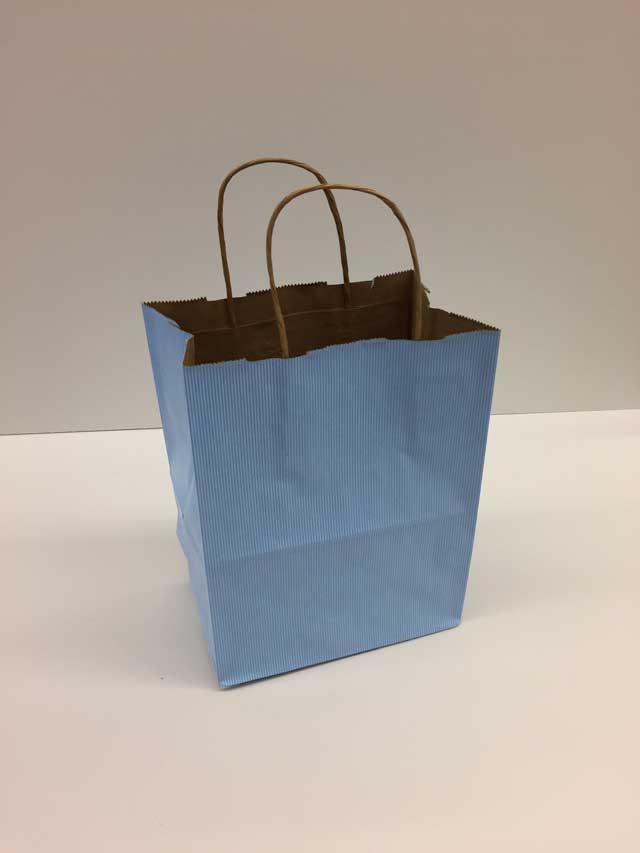 Gift Bag Cub 8 X 4 75 X 10 5 Donahue Paper Emporium